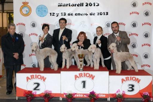Mejor lote cria Martorell 2013